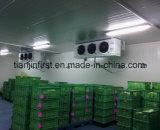 Unidad de refrigeración de la conservación en cámara frigorífica para la carne de la fruta y verdura