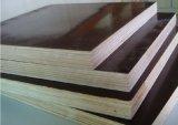La película del encofrado de la construcción hizo frente a la madera contrachapada