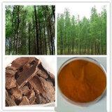 인기 상품에 고품질 소나무 수피 추출