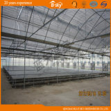 Poly-Film Covered Greenhouse Exported nach Japan für Seeding