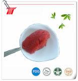 Gesundes eingemachtes Tomatenkonzentrat der Gino-Marken-4.5kg