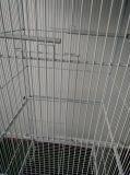 Gaiola do animal de estimação do Aviary do pássaro da gaiola de pássaro do preço de fábrica gaiola ao ar livre da grande