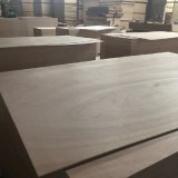 Madera dura del uso del pegamento E1/álamo/madera contrachapada de interior de Okoume de la base de Combi