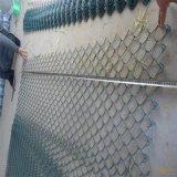 PVC上塗を施してあるチェーン・リンクの金網(25mへの10m)