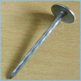 Chiodi del tetto dell'ombrello placcati zinco con la rondella di gomma