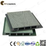 Material plástico do revestimento da parede (TF-04S)
