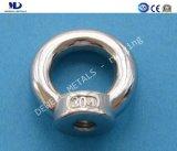 AISI304 스테인리스 주물 DIN580 드는 눈 견과