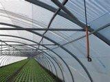 卸し売りPEの透過農業のプラントカバーのための反昆虫の鳥のネット