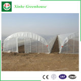 低価格のHydroponicsの農業のプラスチックフィルムの温室