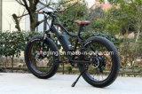 7 속도 바닷가 함 36V 250W 뚱뚱한 타이어 전기 자전거