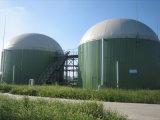 Preço do fabricante Vaca Fazenda / Esgoto com sistema de CHP 20-1000kw 250kw 500kw Biogás Digester / Biogas Gerador de Gás / Central de Energia / Gerador
