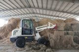 Zl08 Small Wheel Loader met Ce