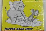 La colla dei mouse intrappola la scheda, ratto appiccicoso del mouse del roditore del cacciatore di pelli