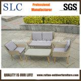 Aufenthaltsraum-Sofa, im Freienmöbel (SC-1723)