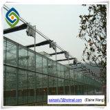 Estrutura de aço inoxidável com estufa de vidro com sistemas hidropônicos