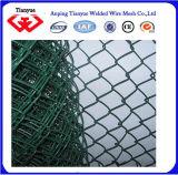 직류 전기를 통하고 PVC 입히는 체인 연결 고품질 담 (TYC-048)