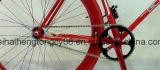 стальные одиночные велосипед/Bike скорости 700c с цветастой рамкой (SH0-FX01)