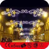 110-220電圧およびChristmas Holiday Name Festivals Motif Lights