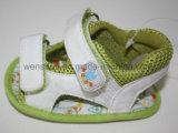 A praia do bebê da cor verde calç Ws1167