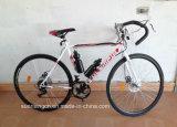 Las carreras de bicicleta/Bicicleta de Montaña