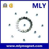 희토류 영원한 NdFeB 모터 자석 네오디뮴 철 붕소 (MLY091)