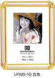 Photo Frame/Picture Frame (LF020G)