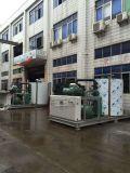 Installatie van het Ijs van de Vlok van de Productie van China de Hoogste 1 30t voor zich het Concrete Mengen