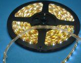 Fita LED SMD