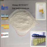Stéroïde 7-Keto-Dehydroepiandrosterone CAS 566-19-8 de grande pureté pour la perte de poids