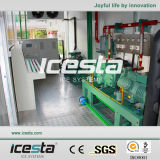Icesta Containerized Eis-Pflanze
