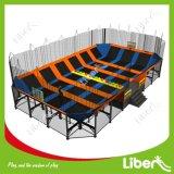 De Arena van Dodgeball van de Bal van de Zijsprong van het Hof van de Bal van de zijsprong