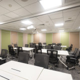 Paredes de partición insonoras para la oficina, la sala de conferencias y Pasillo multiusos