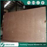 Madera contrachapada comercial de la suposición de la madera contrachapada para la decoración o los muebles