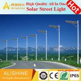 정부는 80W 옥외 램프 정원 점화를 위한 한세트 통합 LED 태양 가로등을 계획한다