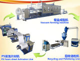 Macchina di Thermoforming del contenitore di alimento della gomma piuma di PS di funzionamento del PLC