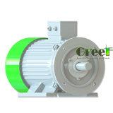 Hydro-éolienne à bas régime d'utiliser 30kw générateur à aimant permanent