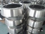 L'ovale Manway d'apertura interno dell'acciaio inossidabile copre il progettista per alimento, strumentazione della bevanda