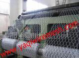 직류 전기를 통한 6각형 철망사, 녹색 PVC 6각형 철망사