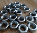 스테인리스 Steel 304 Blue Rubber Ring DIN 985를 가진 18-8년 Hex Nylon Locked Nuts