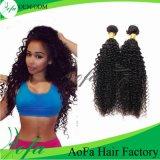 Estensione riccia indiana non trattata di vendita calda dei capelli umani dei capelli di Remy