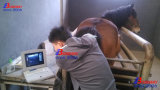 Ecógrafo veterinario portátil para equinos, bovinos, cerdos, perros, gatos, etc, batería recargable, portátil de ultrasonido Doppler, ecografía Aloka MPC