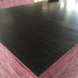 La película de la capa del color del negro de la chapa de la base del álamo hizo frente a la madera contrachapada (21X1250X2500m m)