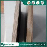 A película enfrentou a madeira do material de construção da madeira compensada