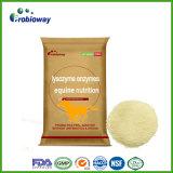 Potro Heat-Resistant Lisozima caballo equina enzimas Aditivos alimentarios