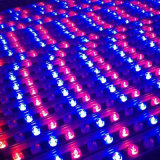 Projet de plein air Lumière LED RVB 12W à l'extérieur de la rondelle de paroi