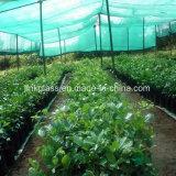 Новый цвет пластика PE Net с УФ-сельскохозяйственного Vegetalbe выбросов парниковых газов (YHZ-Сур03)