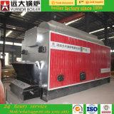 Le charbon industriel a allumé la chaudière à vapeur allumée par boulette en bois ; Chaudière de charbon/chaudière de biomasse à vendre