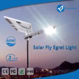 60W 태양 LED 운동 측정기 거리 정원 빛 램프