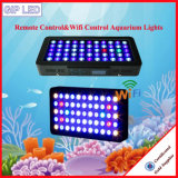 Het Mariene IP65 120W 165W LEIDENE van de afstandsbediening Licht van het Aquarium
