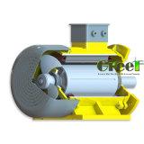 15квт 600 об/мин магнитного генератора, 3 фазы AC постоянного магнитного генератора, использование водных ресурсов ветра с низкой частотой вращения